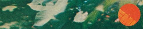 1978bk6
